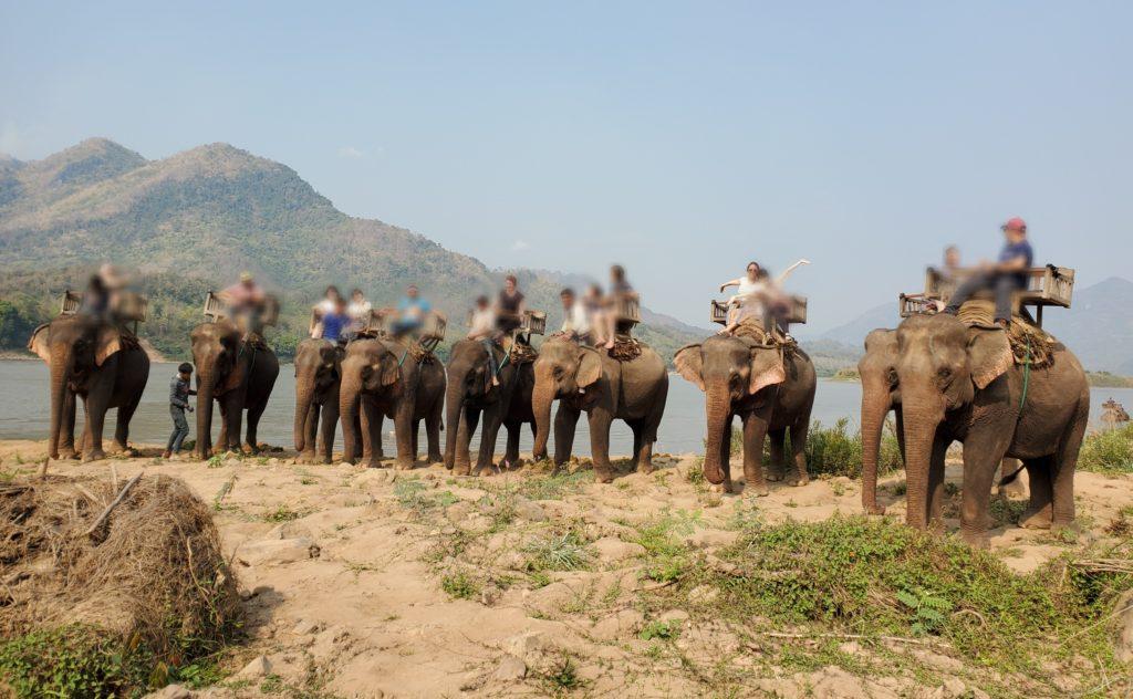 象使いツアー集合写真