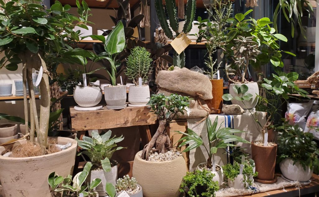 IDÉE Botanique店内